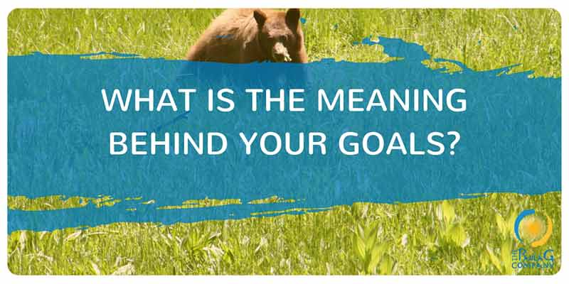 What is the meaning behind your goals?