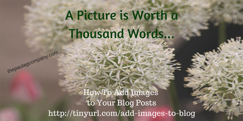 How to add images to your WordPress blog