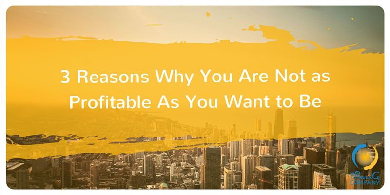 3 reasons you are not as profitable as you want to be